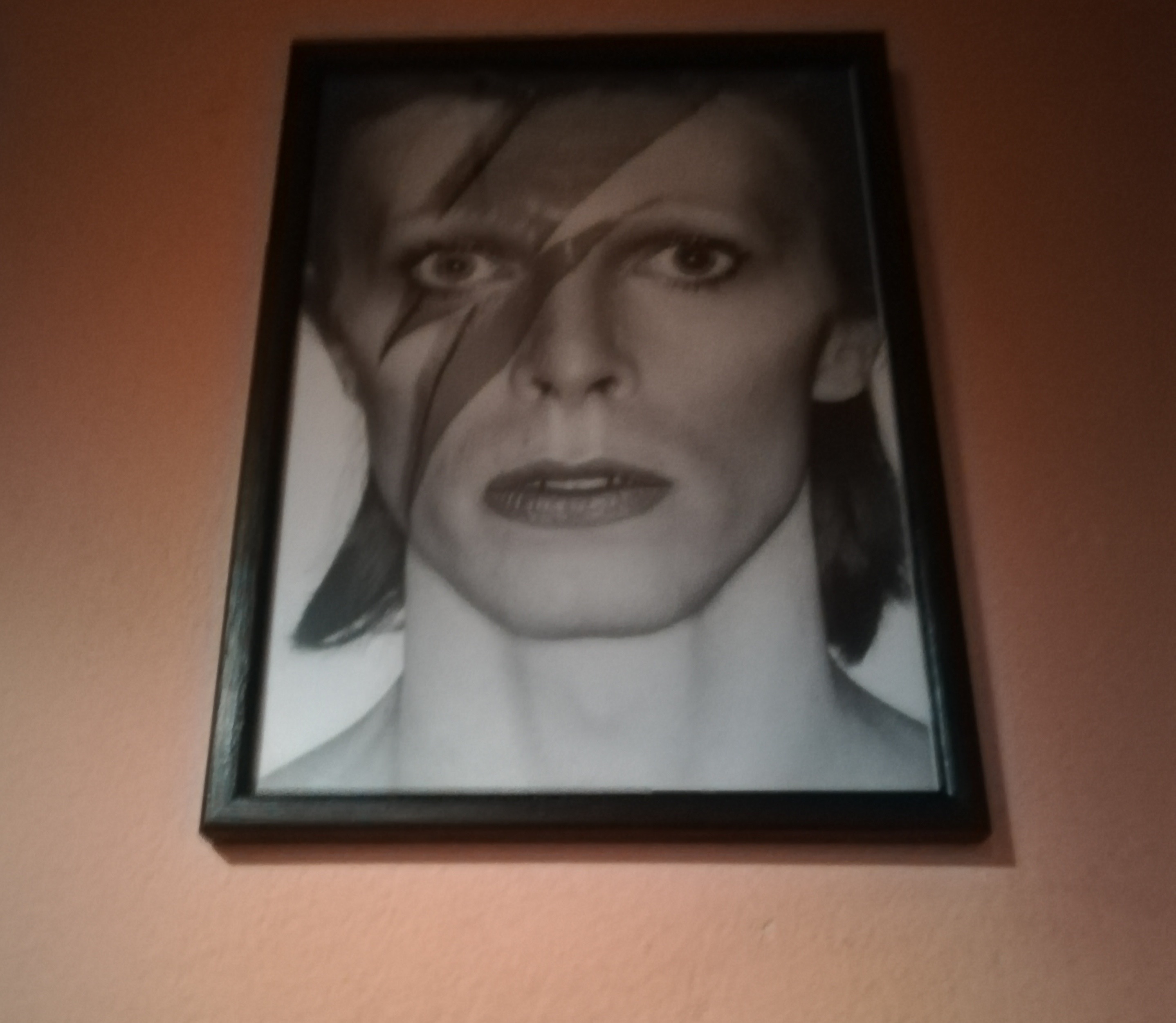 night bowie